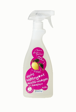 Nettoyant multi-usages spray